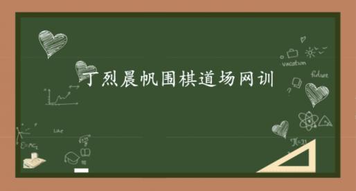 丁烈晨帆围棋道场2018网训