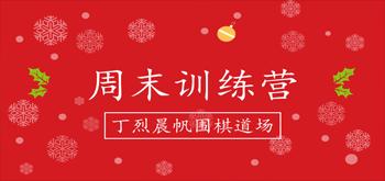 丁烈晨帆围棋道场2018周末班招生简章